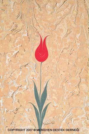 Эбру | тюльпан
