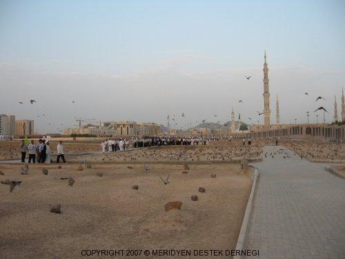Джаннат аль-Баки